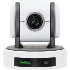 PTZ Камера BirdDog Eyes P100 (White)