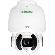 PTZ Камера BirdDog Eyes A200