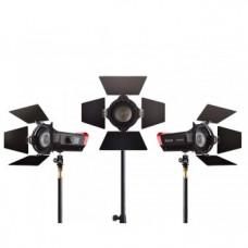 Набор LED прожекторов Aputure Light Storm LS-Mini 20 Flight Kit (ddc)