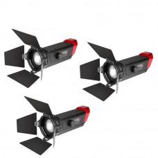 Набор LED прожекторов Aputure Light Storm LS-mini 20 flight kit (ddd)